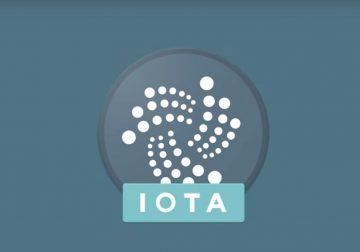 Billetera móvil de Iota creada por su propia comunidad en fase BETA ya está disponible