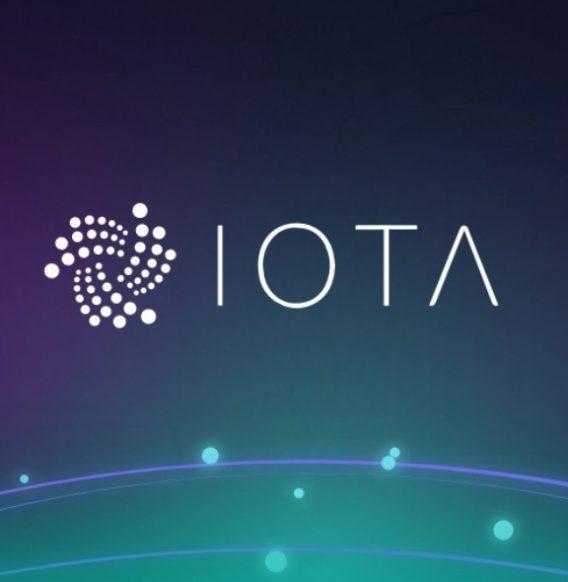Cofundador de IOTA es optimista con el futuro de su criptomoneda
