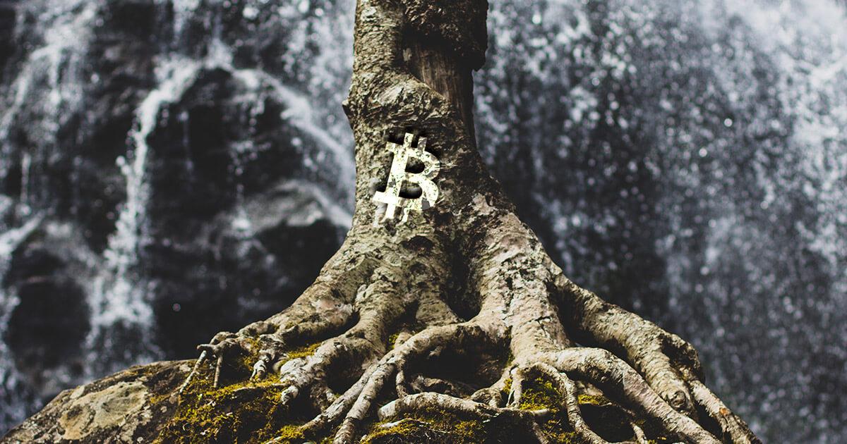 taproot-bitcoin
