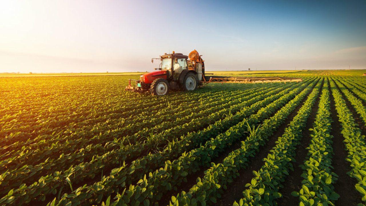 Ant Financial y Bayer desarrollarán un sistema de crecimiento agrícola con tecnología blockchain