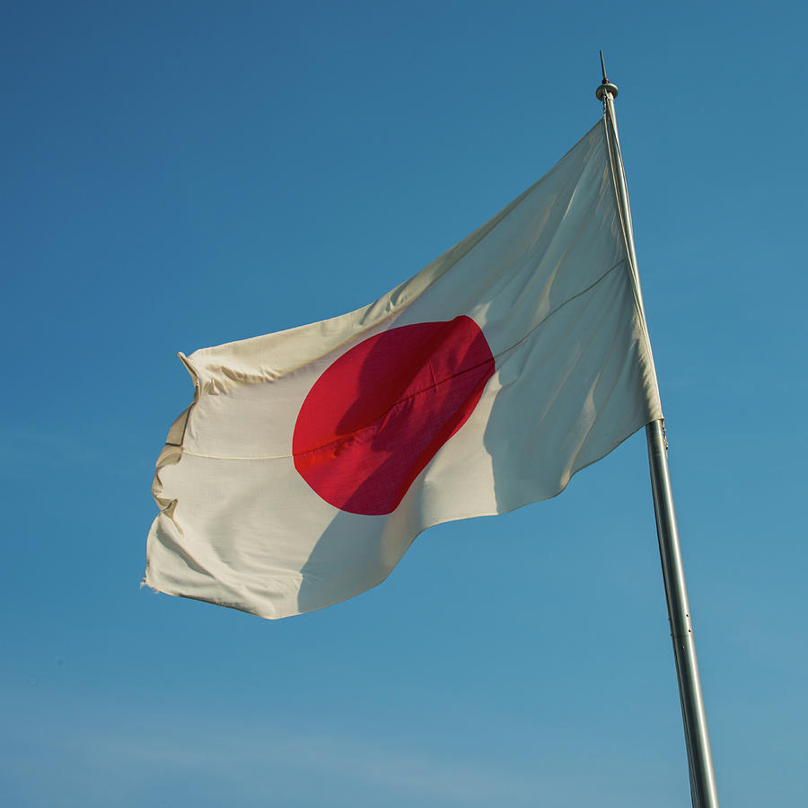 En Japón, un grupo de legisladores trabajan en una propuesta que busca la creación de una moneda digital nacional
