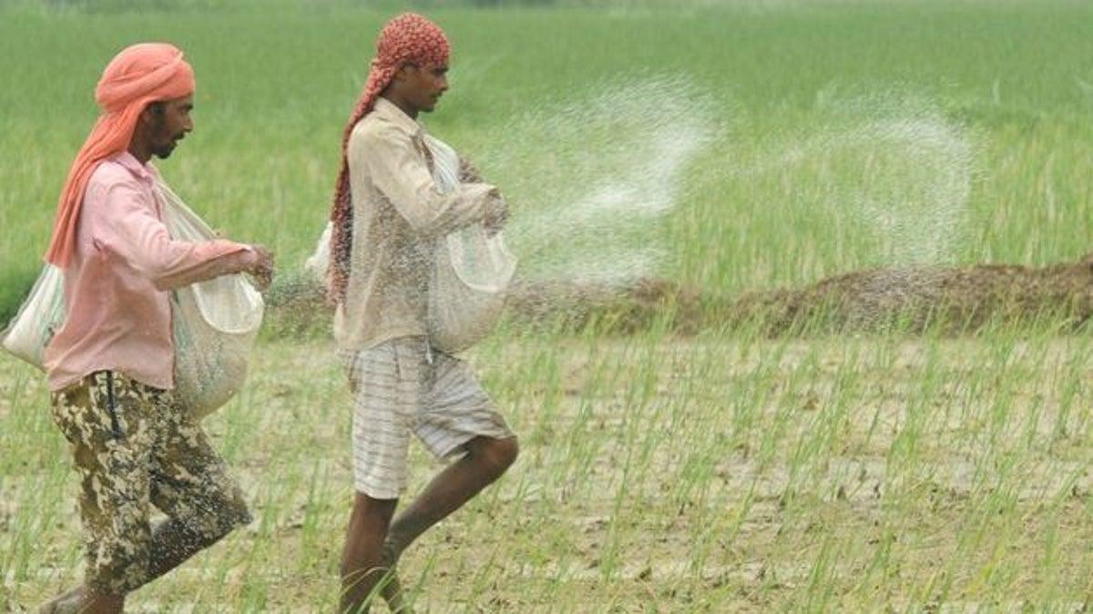 Gobierno de la India se asocia con una startup blockchain para ayudar a los agricultores a vender sus productos