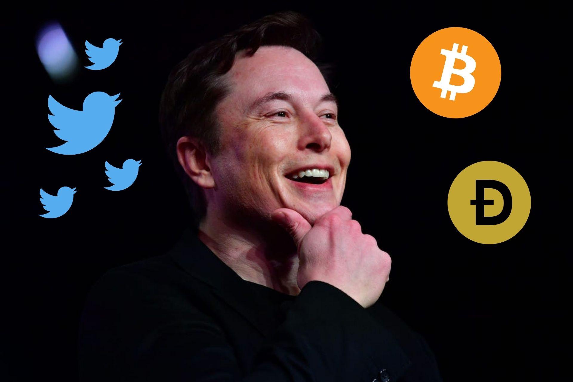 Analizan el impacto de los tweets de Elon Musk sobre Bitcoin y Dogecoin