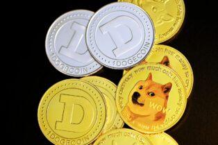 En Brasil, la cadena de comida rápida Burger King acepta Dogecoin como método de pago para Dogpper, una galleta para perros con sabor a Whopper